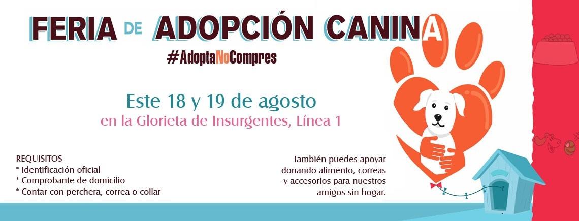 Feria de Adopción Canina